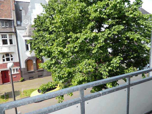 Blick-vom-vorderen-Balkon